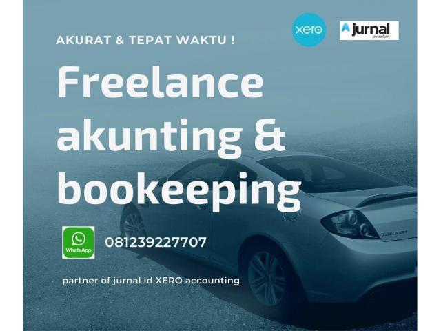 Profesional Freelancer of Accounting Bookeeping